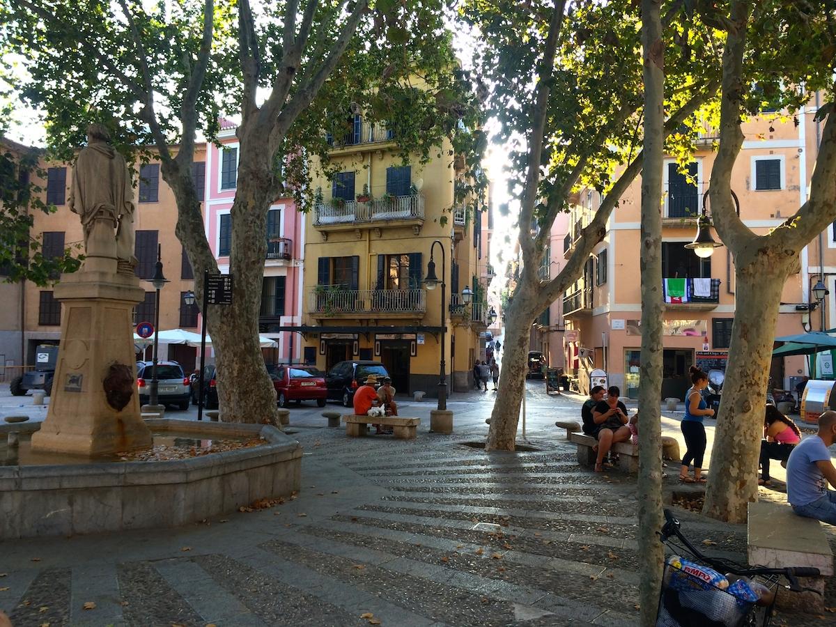 Palma2